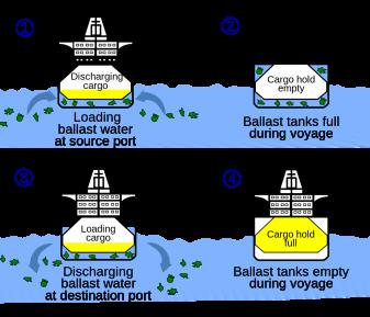 Tại sao nên chọn quét 3D laser khi lắp đặt hệ thống xử lý nước dằn (BWTS)